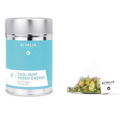Vitalis Dr. Joseph Cool Mint Fresh Energy Kräuteraufguss - 12 Pyramidenbeutel