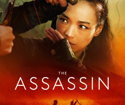 Kung Fu Concussion Discussion - The Assassin