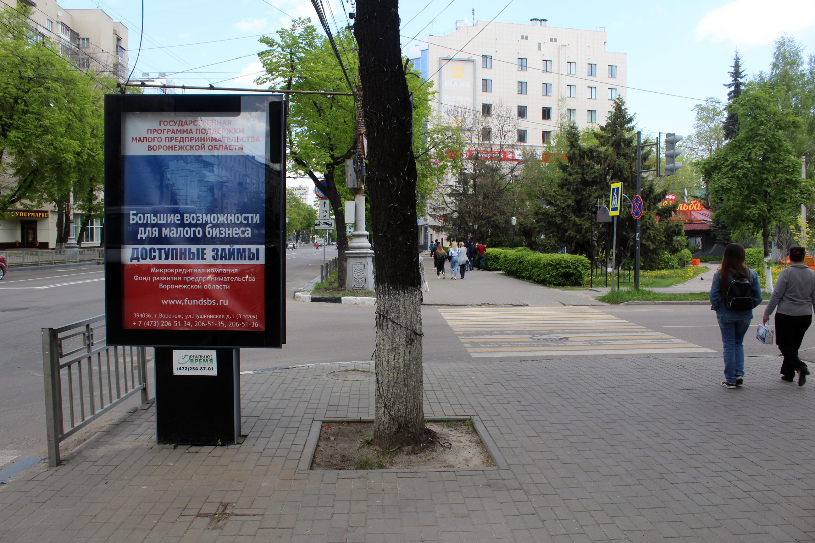 219А ул. Кирова, поз. 8