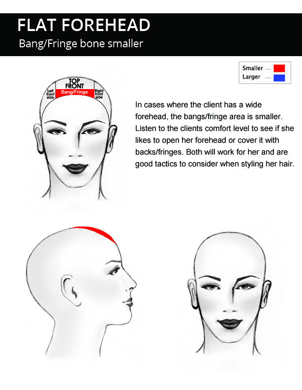 Flat-Forehead-head-shape-description.jpg