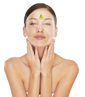Learn more about our facials & massages