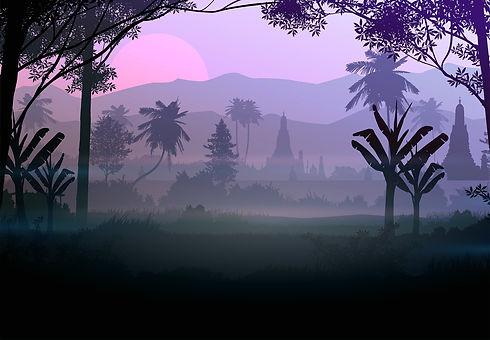 forest-5855196_1920.jpg
