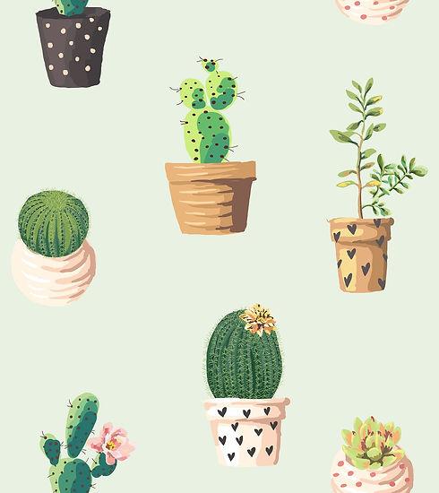 cactus-2191647_1920.jpg