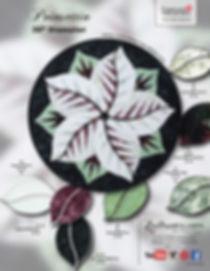 Poinsettia-Cactus-1pg-KS-8-17-17_600.jpg