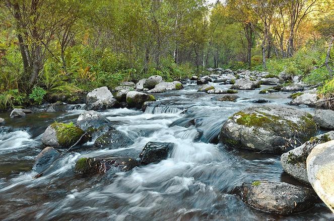 river-89180_1920.jpg