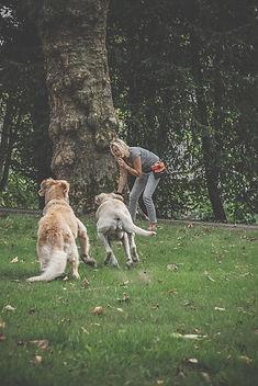 Der perfekte Rückruf - Hundetraining in NRW