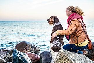 Mensch und Tier Fotografie Johanna Brandhorst