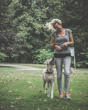 Leinenführung - Hundetraining Carola Hentschel