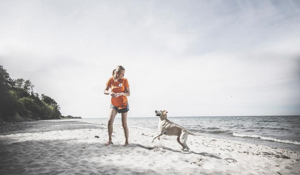 Hundetraining-28.jpg