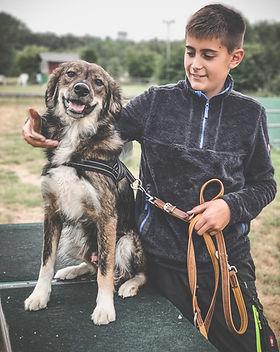 Portrait Kind und Hund in der Hundeschule Pfoten-Training