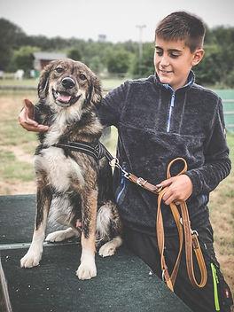 Kinderkurs - Hundetraining in NRW