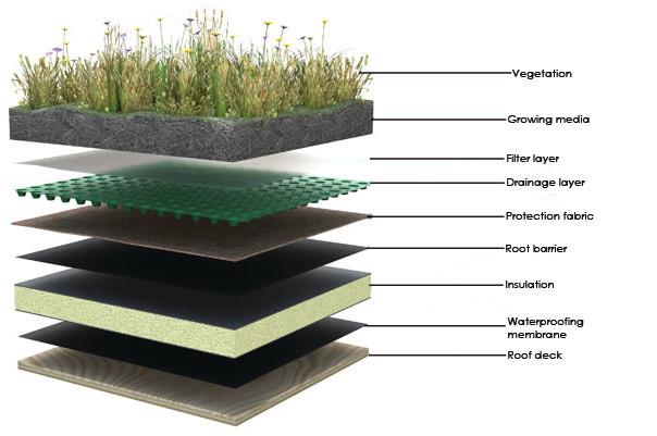 Terrazas Verdes