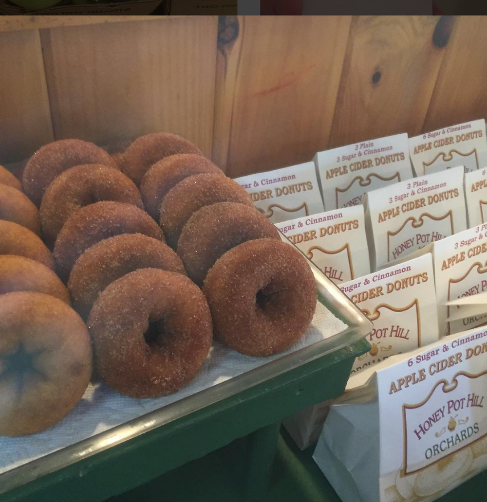 Famous Apple Cider Donuts at Honey Pot Hill Orchards