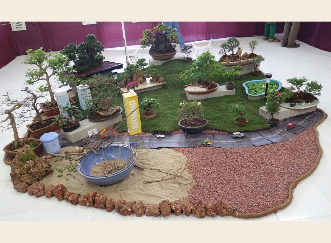 Display at FOT 2016 by Bonsai Study Group members