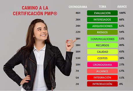 AVANCE-ESTUDIO-PMP.png