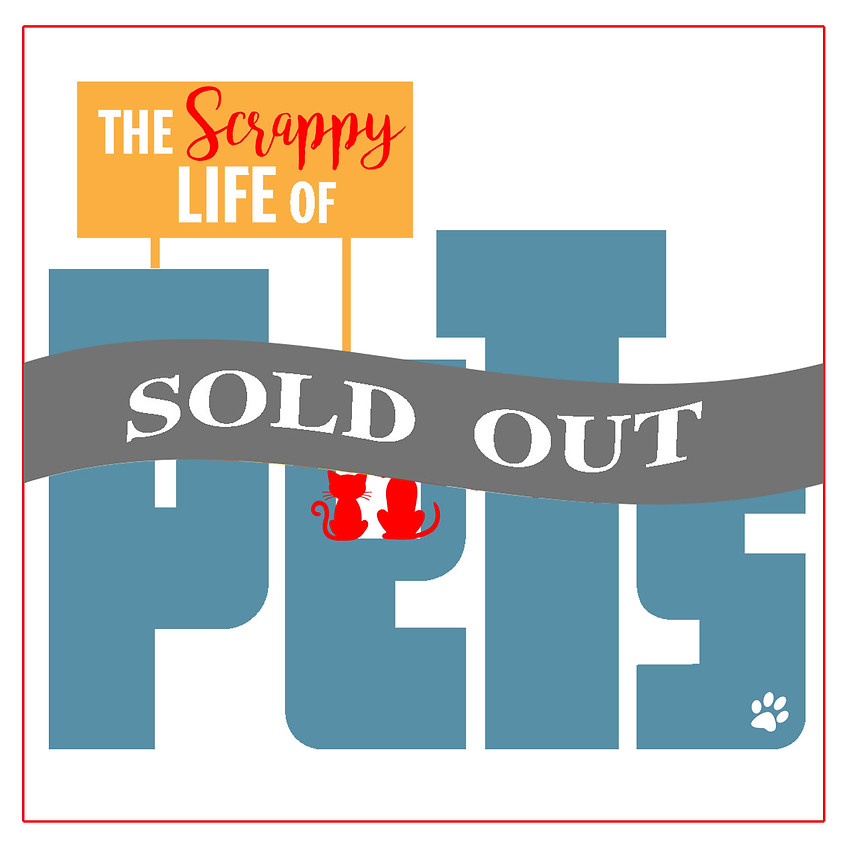 The Scrappy Life of Pets