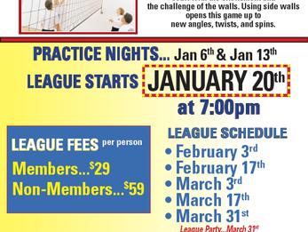 Winter Wallyball League