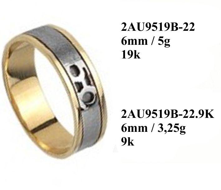 2AU9519A-22