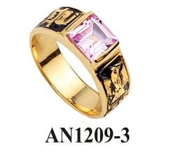 AN1209-3