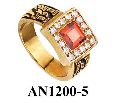 AN1200-5