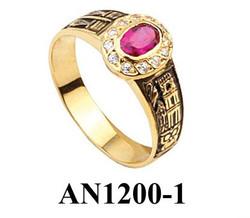 AN1200-1