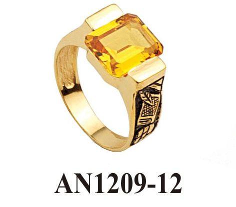 AN1209-12