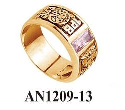 AN1209-13