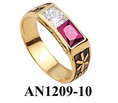 AN1209-10