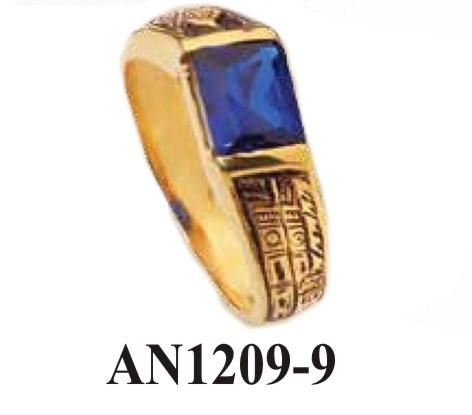 AN1209-9