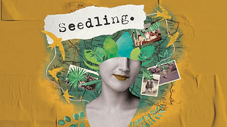 Seedling Poster.jpeg