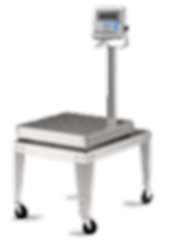 Avery Weigh-Tronix Diamond Series Bench Scale