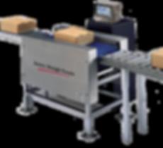 Avery Weigh-Tronix Conveyor Scale