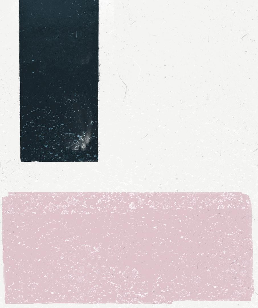 Navy & Pink Color Block