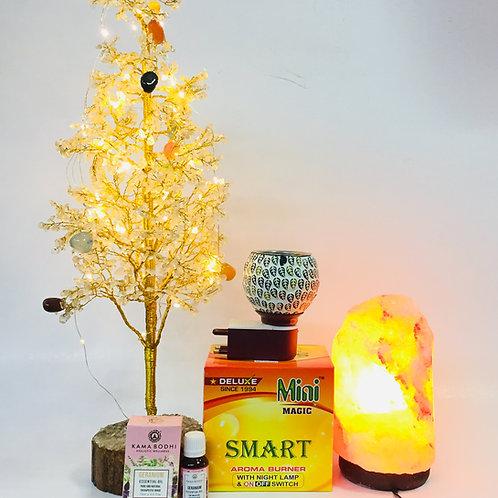 Holistic Wellness Gift Hampers-12