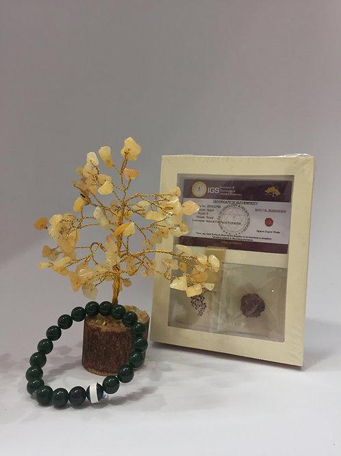 Holistic Wellness Gift Hampers-6