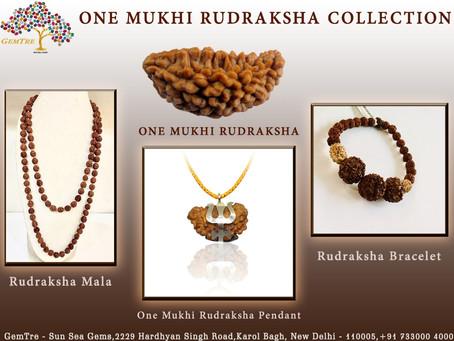 Rudraksha for success in career and business -Gemtre