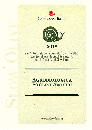 chiocciola 2019.jpg