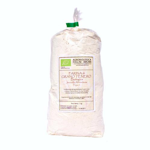 Farina di Grano Tenero (mix di grani tradizionali italiani) conf. 1 Kg  TIPO 1