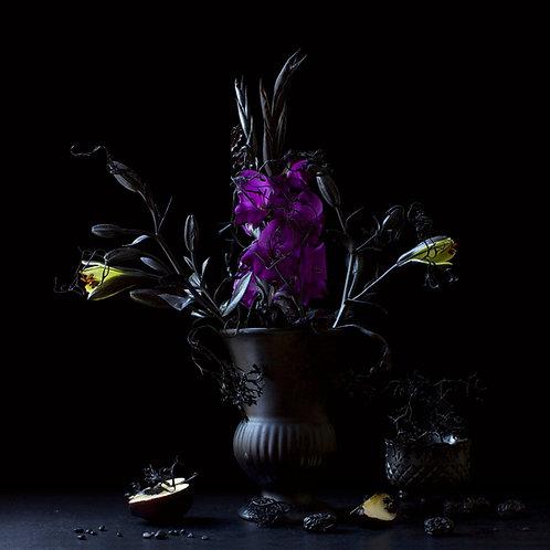 Still Life in Black and Purple