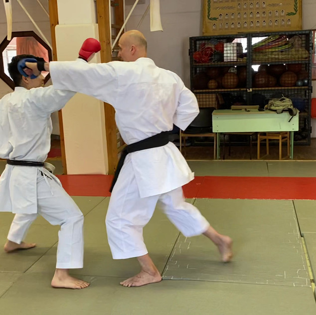 5. Köríves ütés (Mawashi tsuki).mov