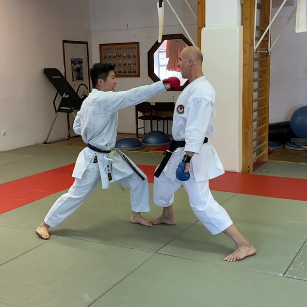 6. Köríves rúgás (mawashi geri).mov