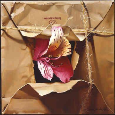 Alstromeria Lily