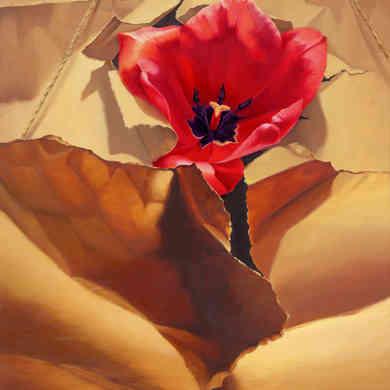 Tulip in Brown Paper
