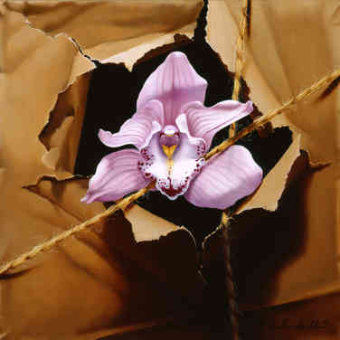 Orchid Caught in Twine