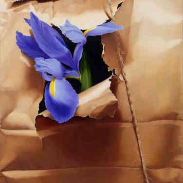 Iris in Brown Paper Sack