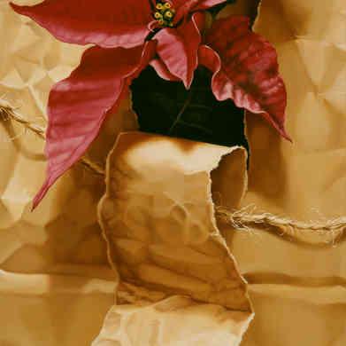 Poinsettia in Torn Paper Sack