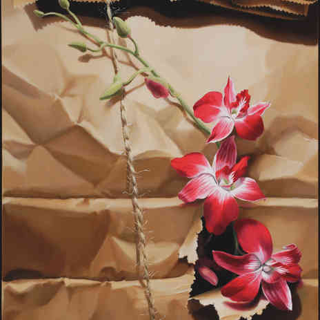 Orchids in Brown Paper Sack