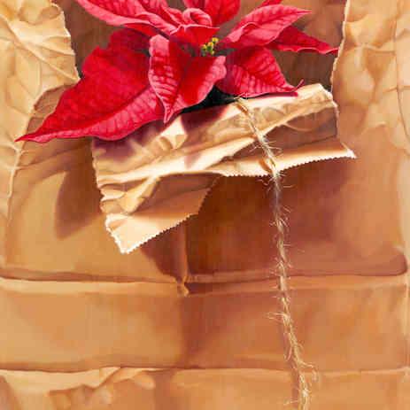 Poinsettia in Brown Paper Sack
