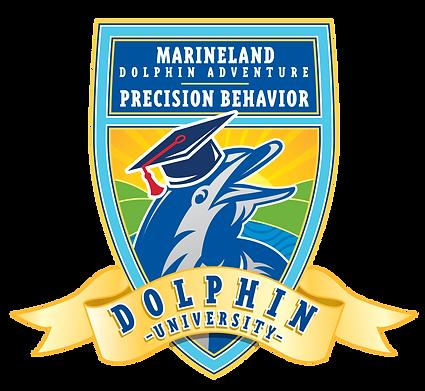 MDA_DolphinUniversityLogo.png