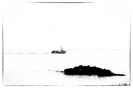 Mussel boat